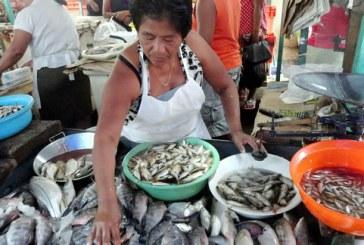 control a comercialización de pescado