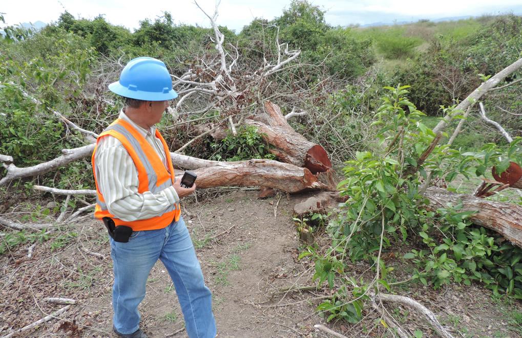 Graves pérdidas en zona de influencia de represa El Quimbo