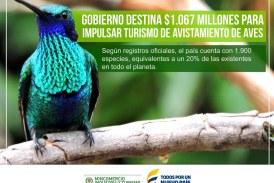 Avistamiento de aves es la nueva estrategia de destino turístico