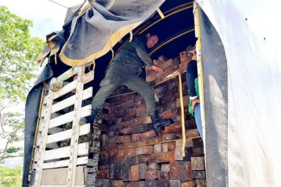 Huila se unió al operativo nacional contra el transporte ilegal de madera