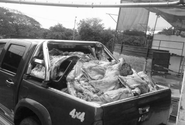 Decomisan 1.356 kilos de carne ilegal en Neiva