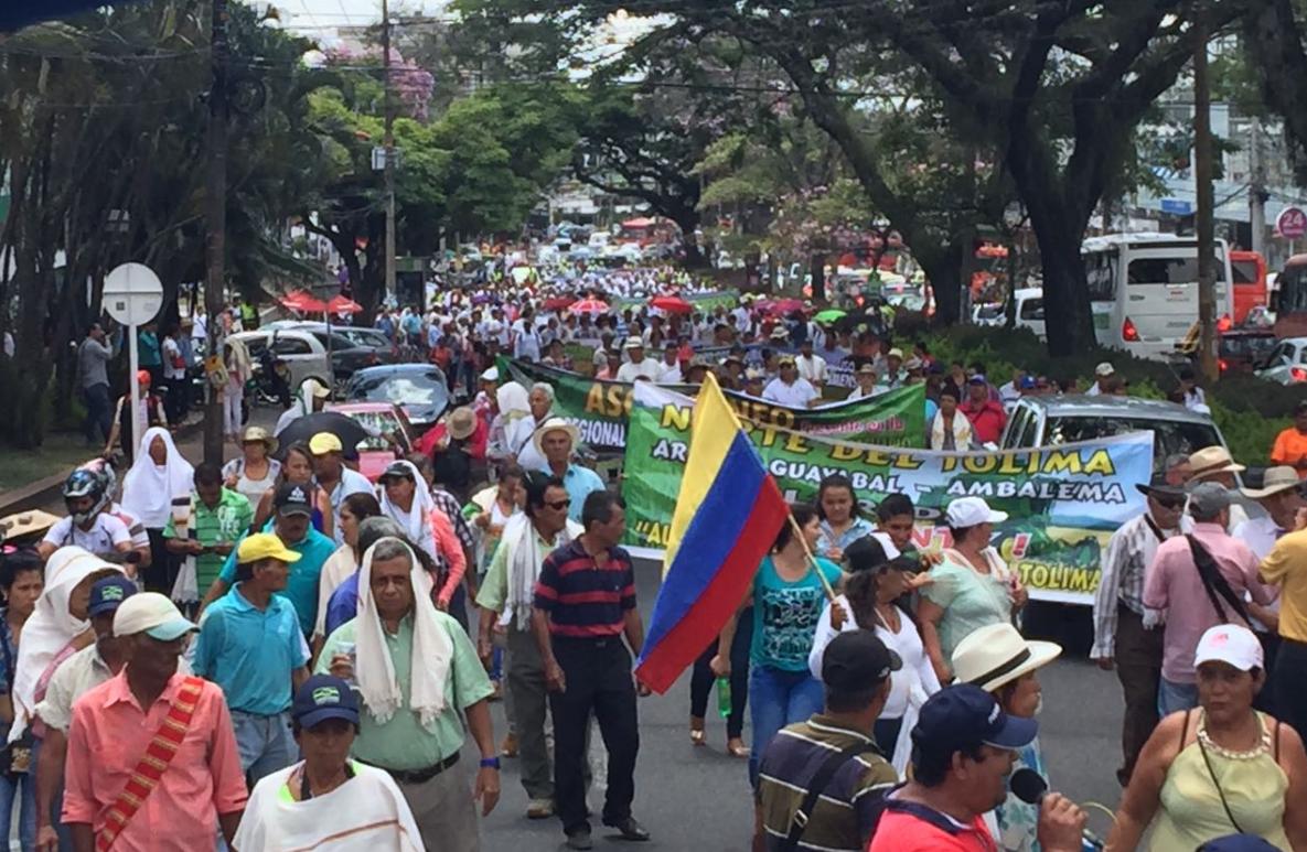 Arroceros de Colombia irán a paro indefinido el 6 de junio