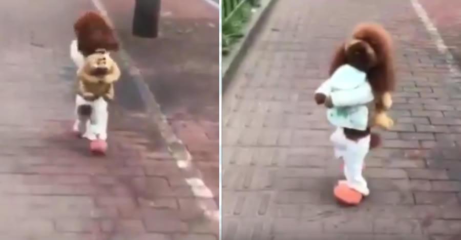 La triste historia detrás de los perritos que caminan en 2 patas