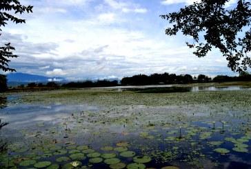 Convenio para mejoramiento del Jardín Botánico de Neiva