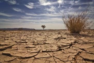 Gobierno lanza Política Nacional de Cambio Climático