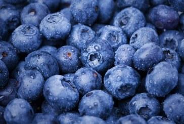 Cinco alimentos que contribuyen a combatir y prevenir enfermedades
